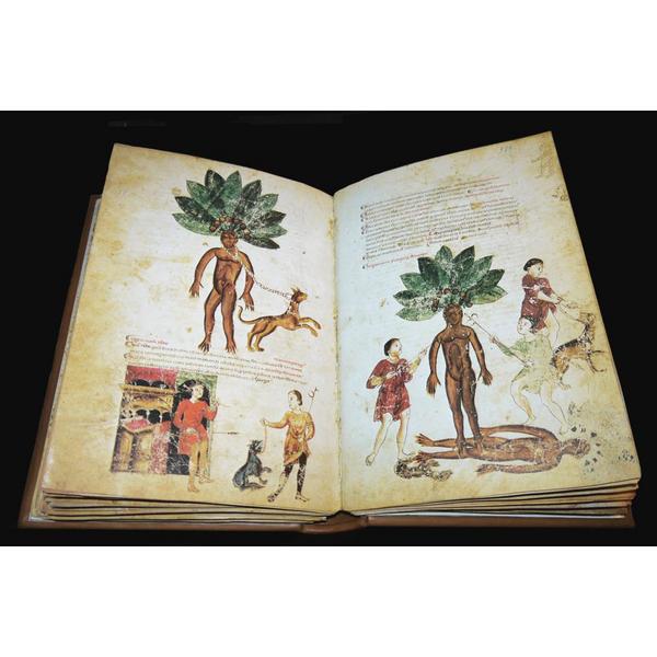Medicina antiqua libri quattuor medicinae