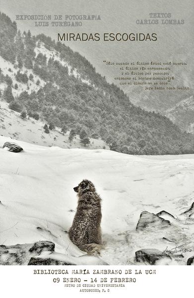 1 cartel del perro pk.jpg