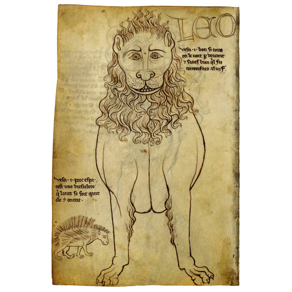 The portfolio of Villard de Honnecourt