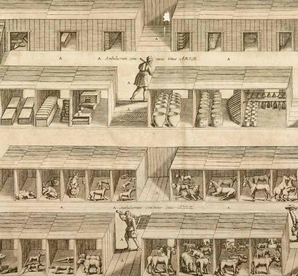 Athanasii Kircheri ... Arca Noë : in tres libros digesta ...