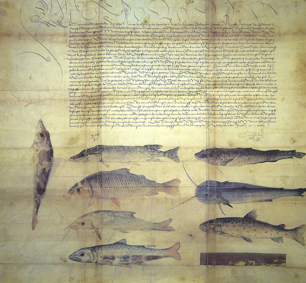 Fischereiordnung Kaiser Maximilians I o Reglamento de&lt;br /&gt;<br /> pesca del emperador Maximiliano I (1506)