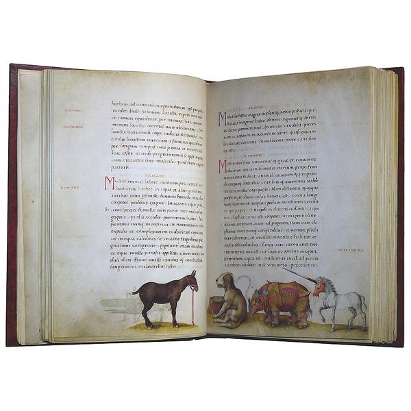 De omnium animantium naturis o&lt;br /&gt;<br /> Libro de los animales &lt;br /&gt;<br />